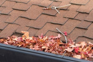 Interstate Roofing can inspect and clean your roof